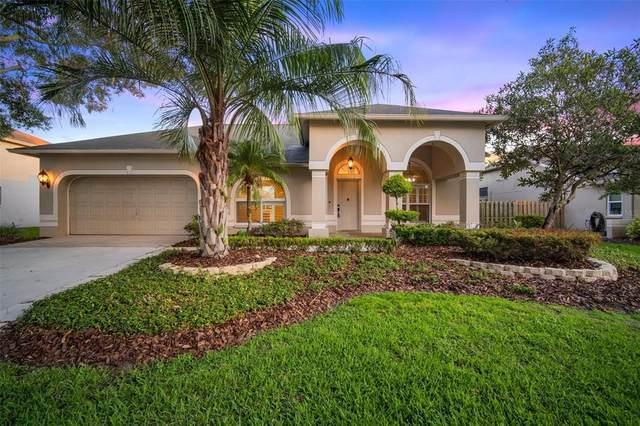 9216 Sunnyoak Drive, Riverview, FL 33569 (MLS #T3309678) :: Dalton Wade Real Estate Group