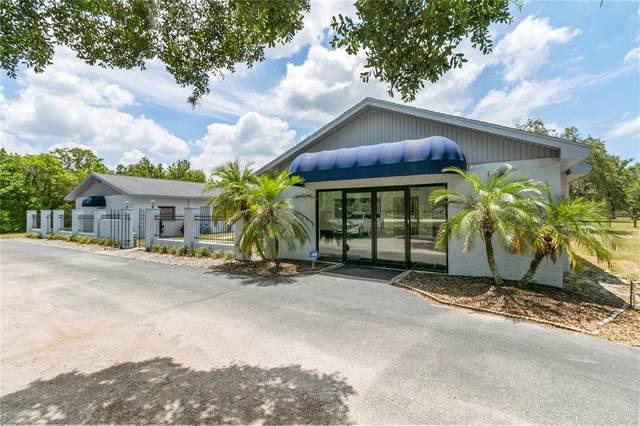 13042 Tarpon Springs Road, Odessa, FL 33556 (MLS #T3309689) :: Everlane Realty
