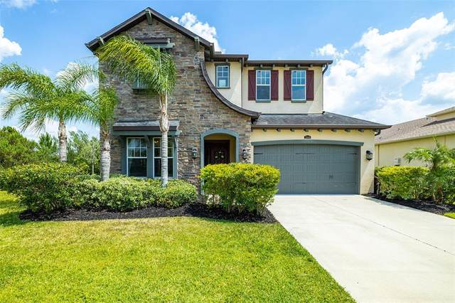 28940 Perilli Place, Wesley Chapel, FL 33543 (MLS #T3309697) :: The Robertson Real Estate Group