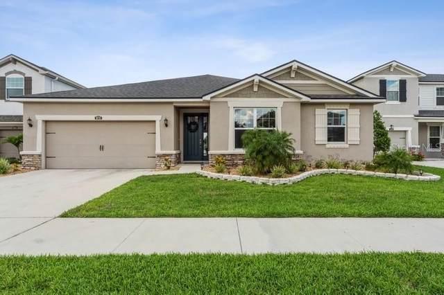 10718 Planer Picket Drive, Riverview, FL 33569 (MLS #T3309705) :: Dalton Wade Real Estate Group