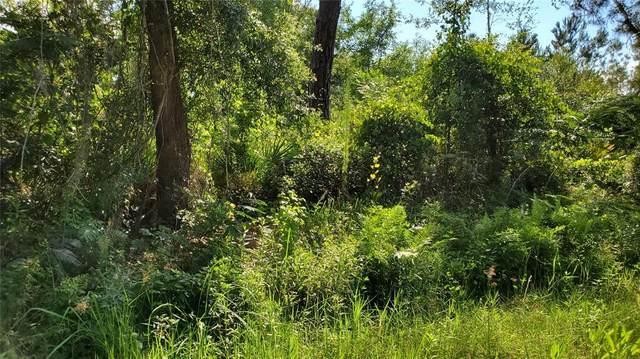 Bowfin Drive, Satsuma, FL 32189 (MLS #T3309713) :: Pristine Properties