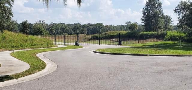 15322 Fishhawk Heights Run, Lithia, FL 33547 (MLS #T3309755) :: Your Florida House Team
