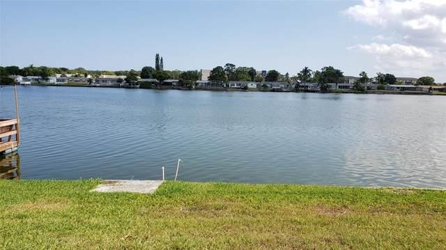 4239 Baden Drive, Holiday, FL 34691 (MLS #T3309778) :: Team Turner