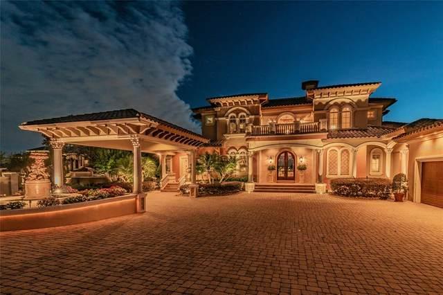 12121 Stonelake Ranch Boulevard, Thonotosassa, FL 33592 (MLS #T3309878) :: Everlane Realty