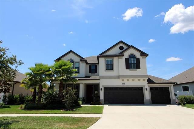 10645 Mistflower Lane, Tampa, FL 33647 (MLS #T3309892) :: Team Bohannon