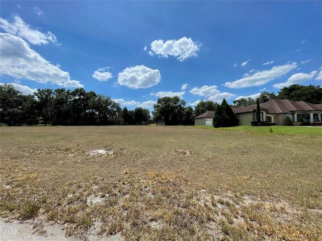 3313 Chase Jackson Branch, Lutz, FL 33559 (MLS #T3309971) :: The Nathan Bangs Group