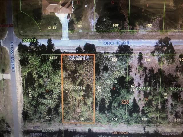 BL223 L14 Orchid Drive, Indian Lake Estates, FL 33855 (MLS #T3309972) :: Everlane Realty