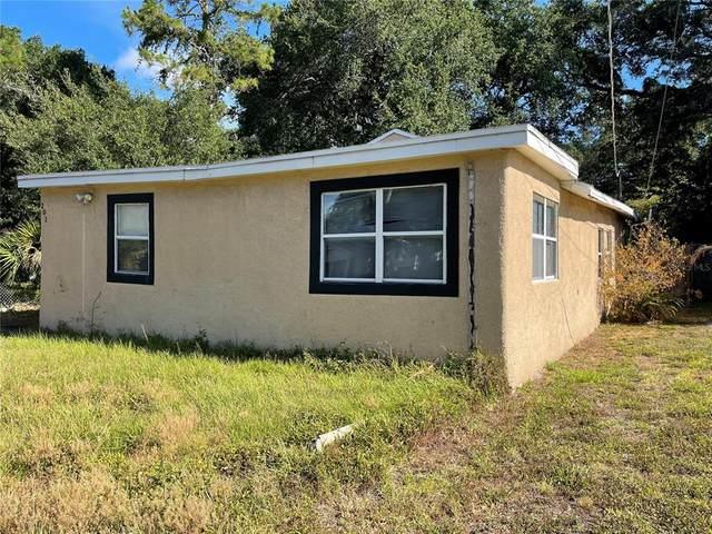 201 W Violet Street, Tampa, FL 33603 (MLS #T3310028) :: Cartwright Realty