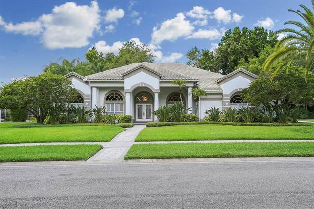 5028 Wesley Drive, Tampa, FL 33647 (MLS #T3310088) :: Cartwright Realty