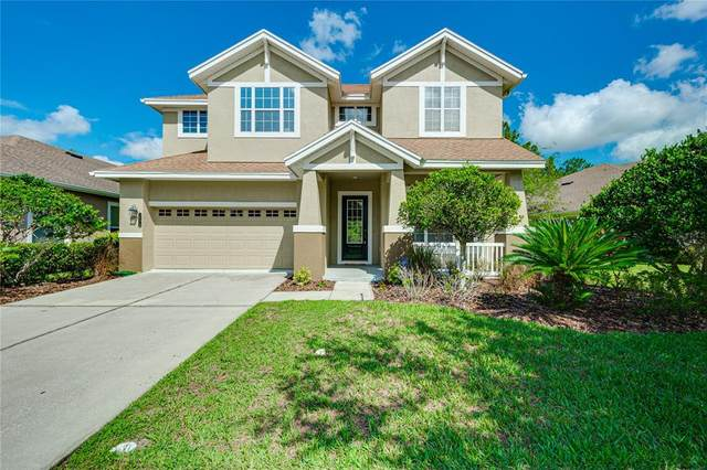 20076 Heritage Point Drive, Tampa, FL 33647 (MLS #T3310113) :: Cartwright Realty