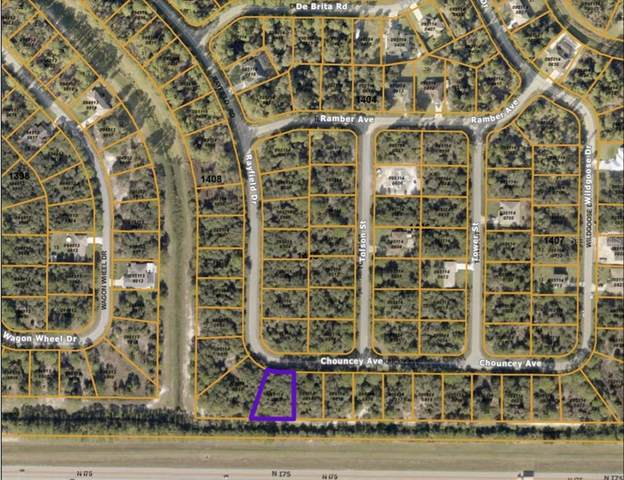 Chouncey Avenue, North Port, FL 34291 (MLS #T3310194) :: Coldwell Banker Vanguard Realty