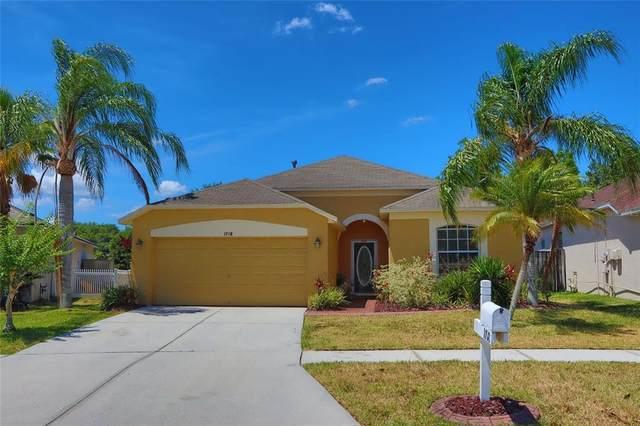 1718 Open Field Loop, Brandon, FL 33510 (MLS #T3310256) :: Everlane Realty