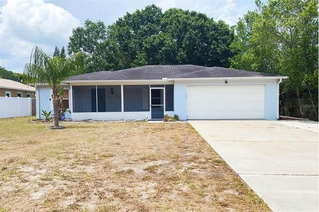 1715 W Perio Street, Tampa, FL 33612 (MLS #T3310350) :: Everlane Realty