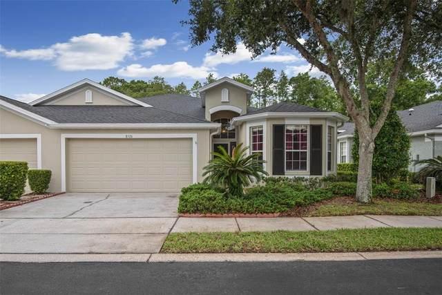 8526 Acorn Ridge Court, Tampa, FL 33625 (MLS #T3310353) :: Cartwright Realty