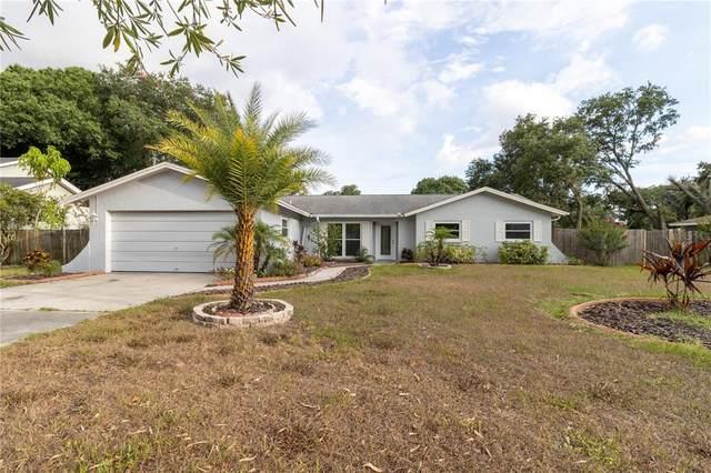 22302 River Rock Drive, Land O Lakes, FL 34639 (MLS #T3310376) :: Delgado Home Team at Keller Williams