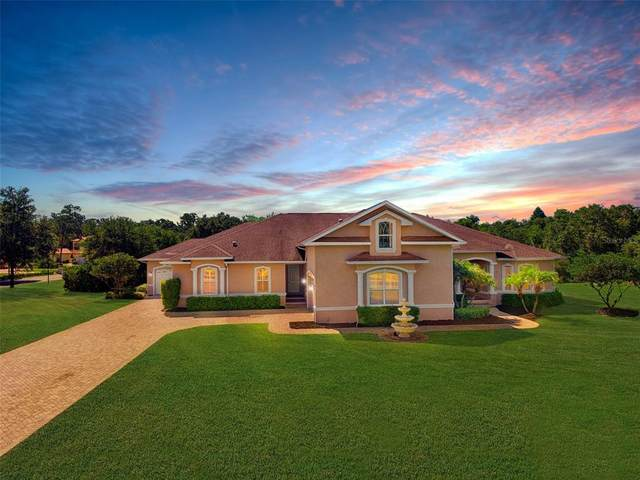 2609 Martucci Road, Seffner, FL 33584 (MLS #T3310452) :: Sarasota Home Specialists