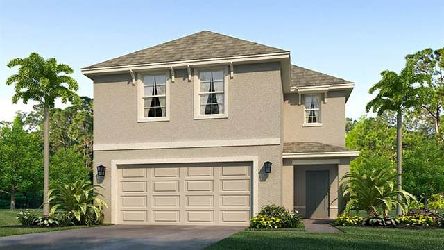 2718 Rock Sound Street, Bradenton, FL 34208 (MLS #T3310508) :: Rabell Realty Group