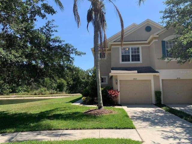2838 Conch Hollow Drive, Brandon, FL 33511 (MLS #T3310510) :: Rabell Realty Group