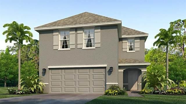2809 Rock Sound Street, Bradenton, FL 34208 (MLS #T3310519) :: Rabell Realty Group