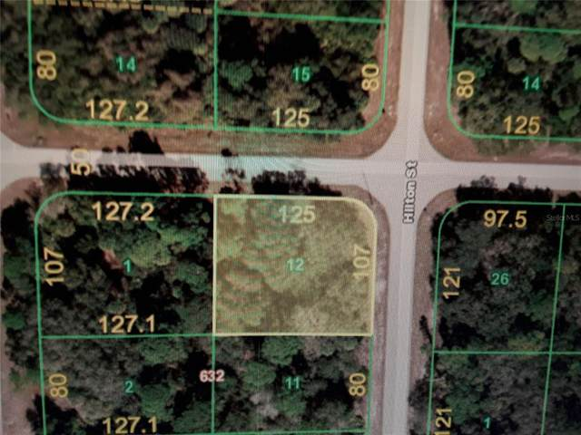 17023 Arthur Avenue, Port Charlotte, FL 33948 (MLS #T3310615) :: Everlane Realty