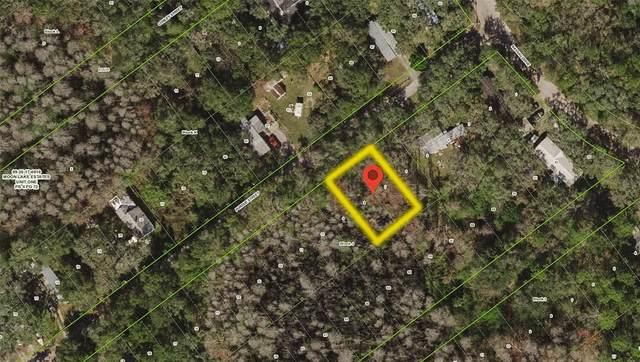 Lots 6 & 7 Purdue Street, New Port Richey, FL 34654 (MLS #T3310621) :: Cartwright Realty