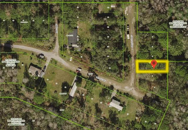 Lots 3 & 4 Spencer Street, New Port Richey, FL 34654 (MLS #T3310626) :: Cartwright Realty