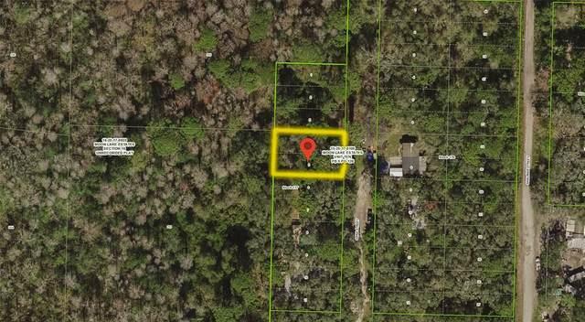 Lots 4 & 5 Oana Street, New Port Richey, FL 34654 (MLS #T3310630) :: Cartwright Realty