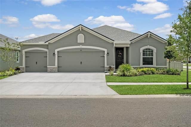 909 Lee Shore Street, Valrico, FL 33594 (MLS #T3310823) :: Everlane Realty