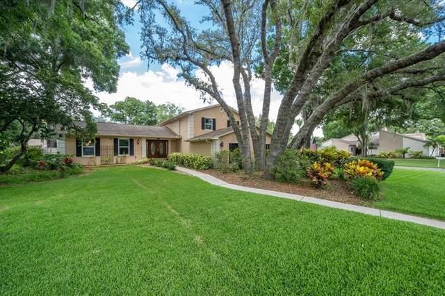 4501 Old Saybrook Avenue, Tampa, FL 33624 (MLS #T3310829) :: Expert Advisors Group