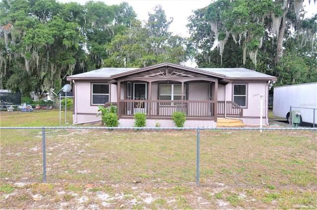 1958 Cr 439Cw, Lake Panasoffkee, FL 33538 (MLS #T3310857) :: Zarghami Group
