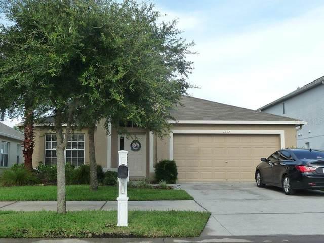 Wesley Chapel, FL 33545 :: Southern Associates Realty LLC