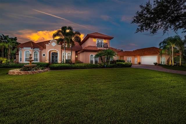 18761 Hillstone Drive, Odessa, FL 33556 (MLS #T3310885) :: Team Bohannon