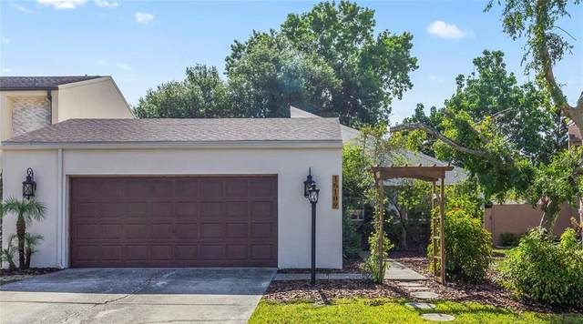 16109 Gardendale Drive, Tampa, FL 33624 (MLS #T3310896) :: Team Pepka