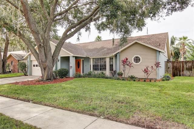 1425 Monte Lake Drive, Valrico, FL 33596 (MLS #T3310921) :: Everlane Realty