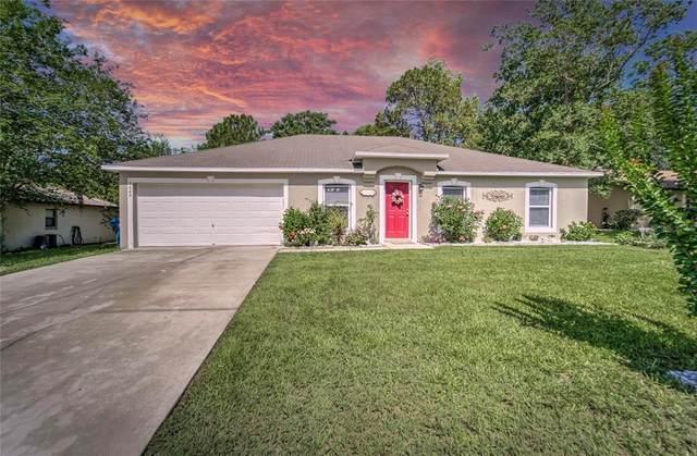 3049 Eunice Avenue, Spring Hill, FL 34609 (MLS #T3310972) :: Dalton Wade Real Estate Group