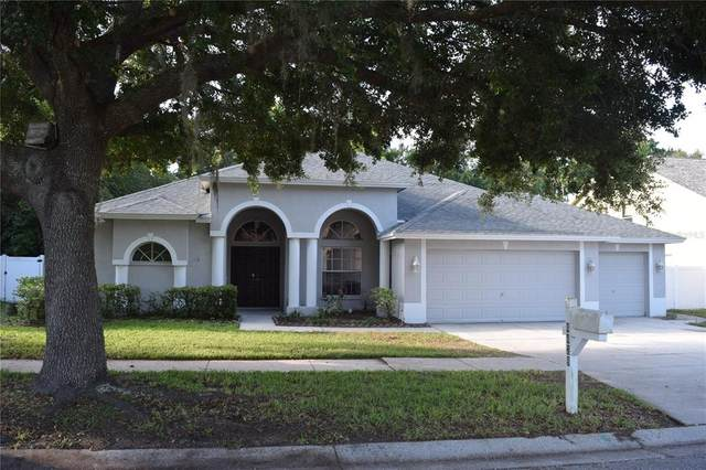 4428 Winding River Drive, Valrico, FL 33596 (MLS #T3311059) :: Everlane Realty