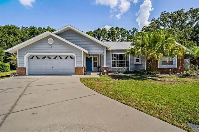 3150 Tori Court, New Port Richey, FL 34655 (MLS #T3311075) :: RE/MAX LEGACY
