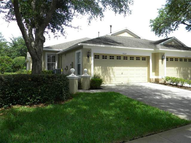 19127 White Wing Place, Tampa, FL 33647 (MLS #T3311076) :: Your Florida House Team