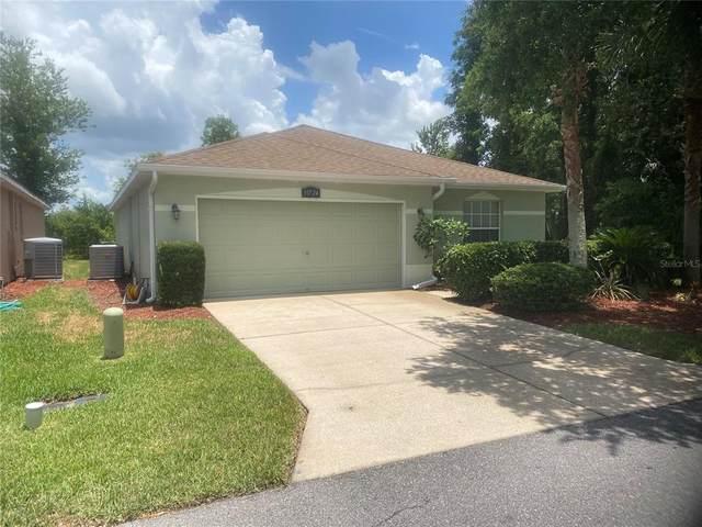 10724 Collar Drive, San Antonio, FL 33576 (MLS #T3311099) :: Everlane Realty