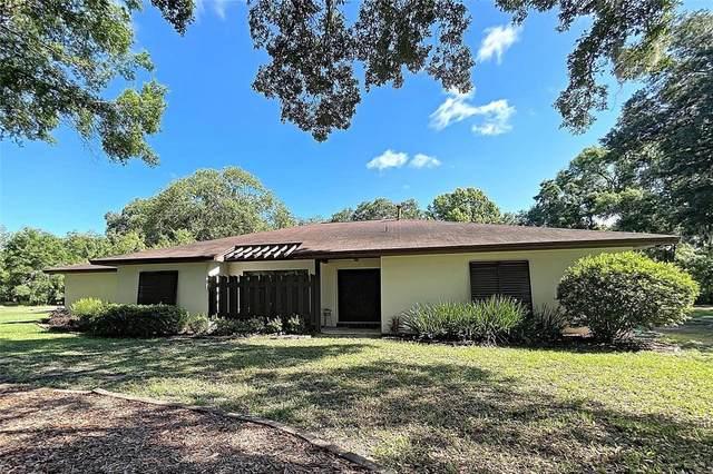 23121 Sundance Lane, Land O Lakes, FL 34639 (MLS #T3311135) :: Your Florida House Team
