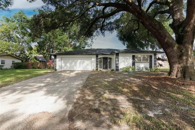 3401 Clover Leaf Lane, Land O Lakes, FL 34639 (MLS #T3311167) :: Delgado Home Team at Keller Williams