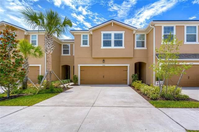 5640 Grand Sonata Avenue, Lutz, FL 33558 (MLS #T3311183) :: The Hustle and Heart Group