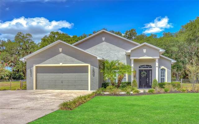 4503 Courson Boulevard, Lakeland, FL 33811 (MLS #T3311207) :: Rabell Realty Group