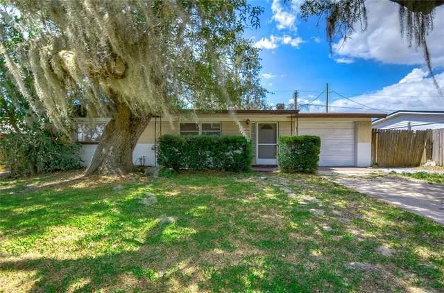 4025 Kibler Lane, Holiday, FL 34691 (MLS #T3311211) :: Team Turner