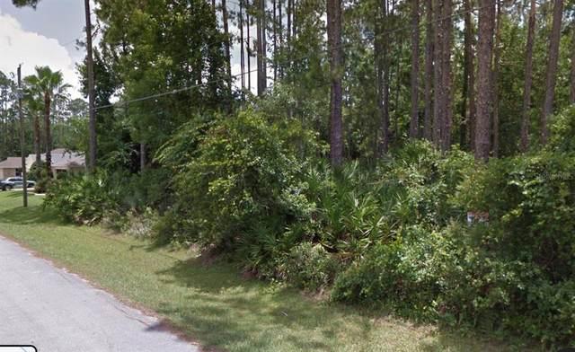 17 Edith Pope Drive, Palm Coast, FL 32164 (MLS #T3311257) :: Lockhart & Walseth Team, Realtors