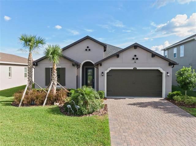 28746 Lucero Lane, Wesley Chapel, FL 33543 (MLS #T3311276) :: Everlane Realty