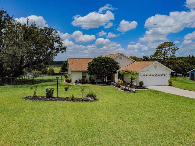 9925 Wallaston Drive, Dade City, FL 33525 (MLS #T3311294) :: Everlane Realty