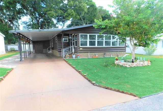 36901 Tara Avenue, Zephyrhills, FL 33542 (MLS #T3311316) :: Rabell Realty Group