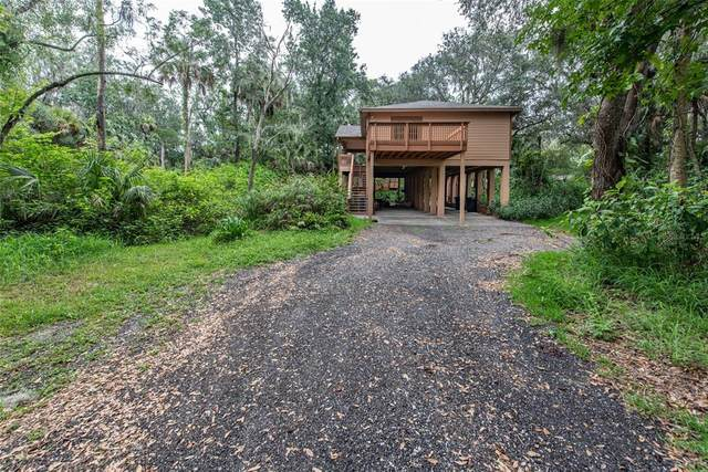 4509 River Drive, Valrico, FL 33596 (MLS #T3311329) :: Your Florida House Team