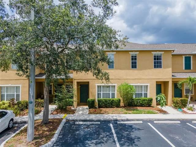 13123 Kings Crossing Drive, Gibsonton, FL 33534 (MLS #T3311337) :: Expert Advisors Group